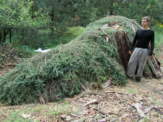 Using Tree Branches For Shelter   14 Survival Shelters You Can Build For Any Situation