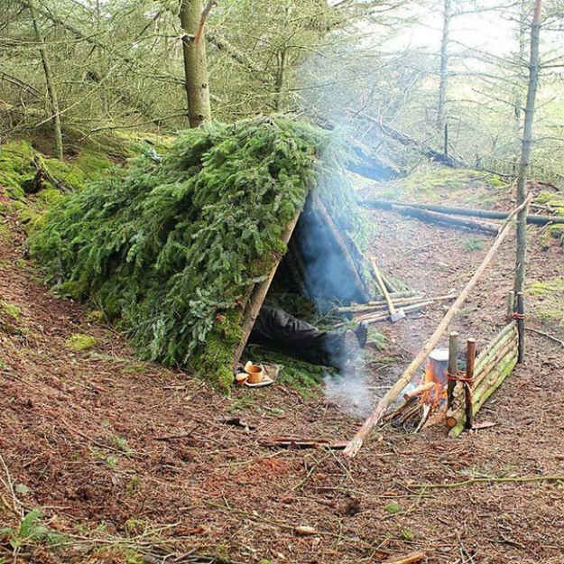 Using Leaves In The Forest For Shelter   14 Survival Shelters You Can Build For Any Situation