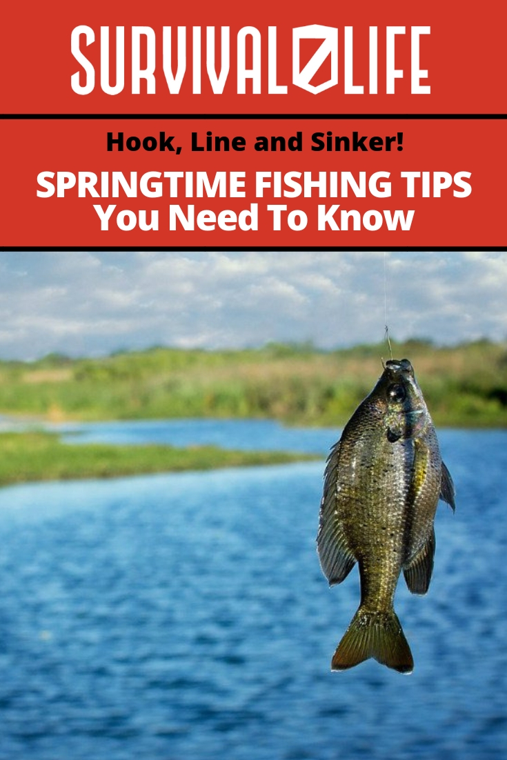 Check out Hook, Line and Sinker! Springtime Fishing Tips You Need To Know at https://survivallife.com/springtime-fishing-tips/