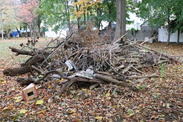Gathering Natural Materials   Debris Hut Survival Shelters   Create Survival Shelters From Debris