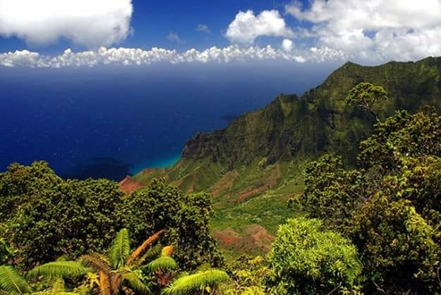 """Camping in Hawaii 