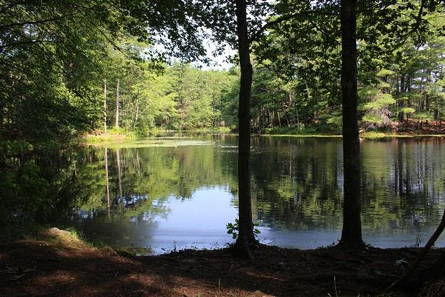 Camping in Massachusetts | Ultimate List of Campgrounds Around US | Survival Life Camping Spots List