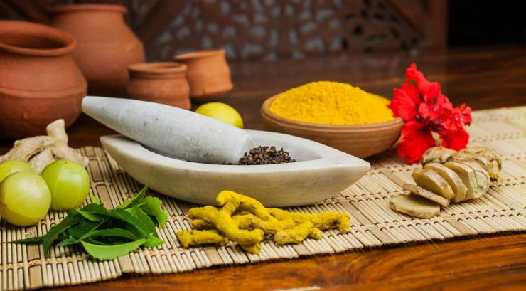 Natural ingredients arranged in mortar and pestle | Ayurvedic Remedies for Better Health