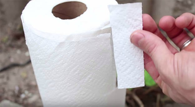Cut A Small Portion Of Tissue Paper And Roll It Into The Shape Of A Wick   How to Make a Tuna Oil Lamp
