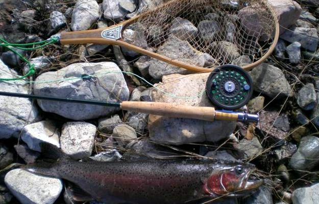 Rod, Hook, and String | How To Catch A Fish Without a Fishing Pole | Homemade Survival Fishing Kit