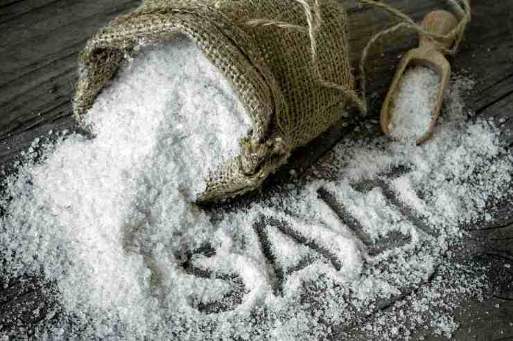 Salt | Survival Food Items That Will Outlast The Apocalypse