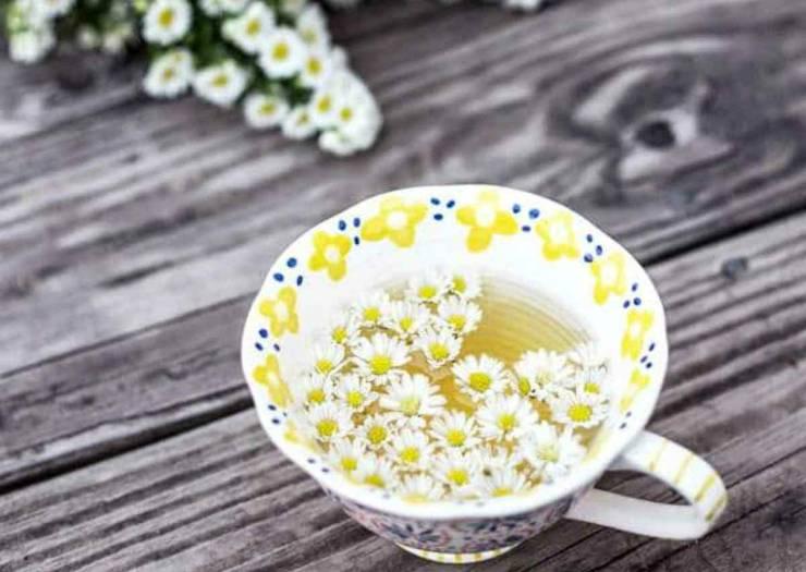 Chamomile tea | Incredible Medicinal Herbs For Your Indoor Garden