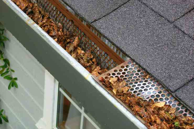 Autumn leaves from gutter | Flood Survival Tips | How To Survive Before, During, And After A Flood