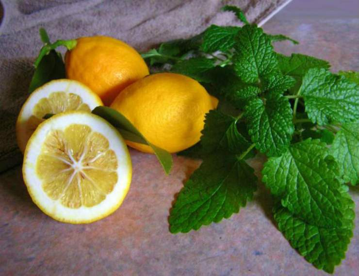 Lemon in the table | Home Remedies For Cold And Flu | Surprisingly Simple Natural Relief