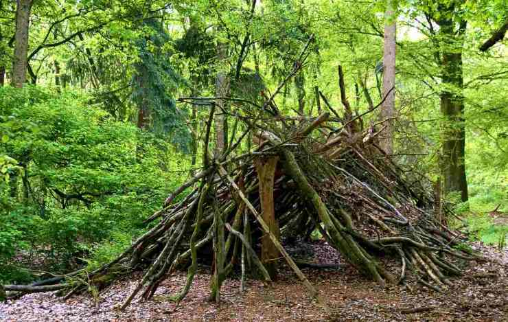 A shelter hut construction of branches in a forest | Top Survival Skills | Learn Now, Survive Later