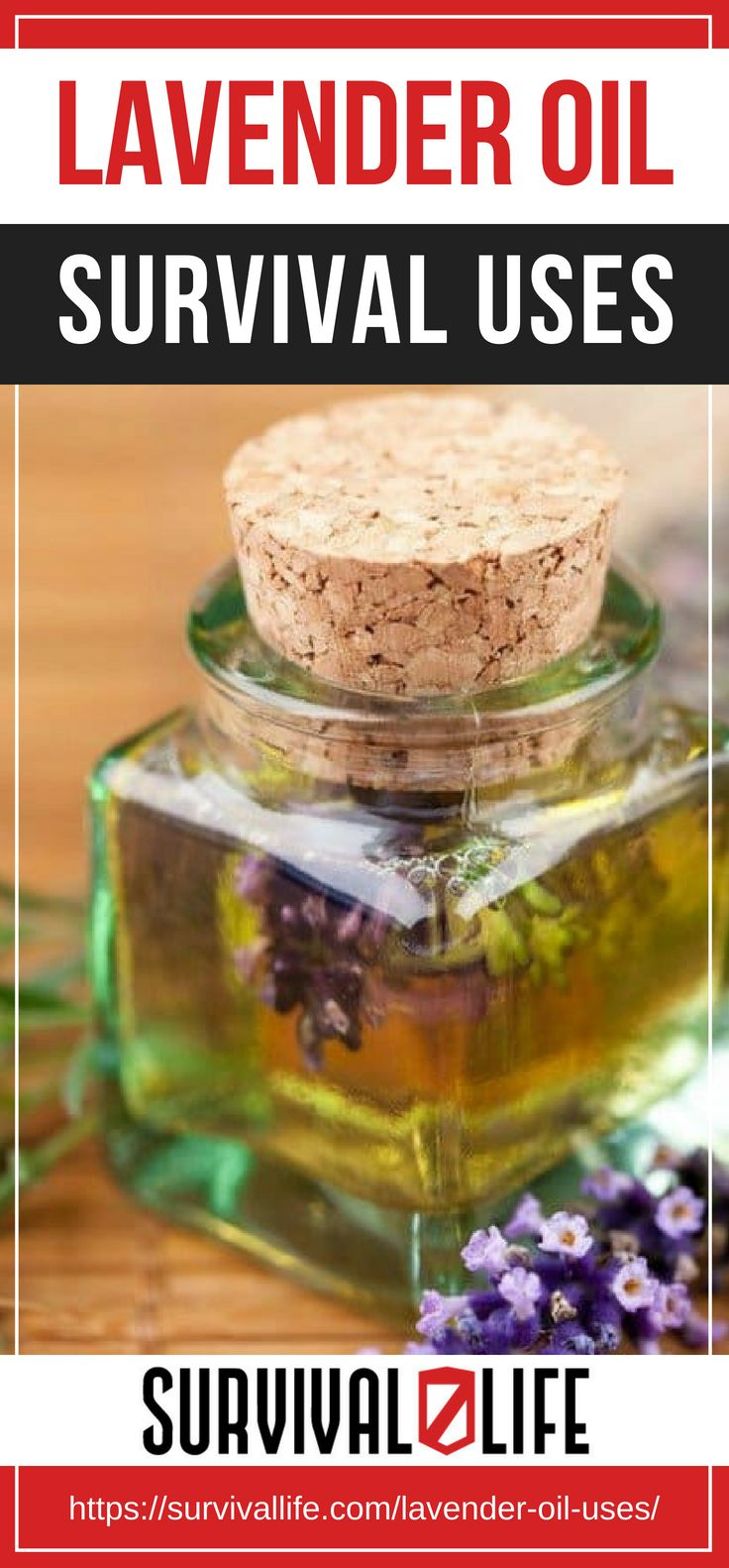 Placard | Lavender Oil Survival Uses