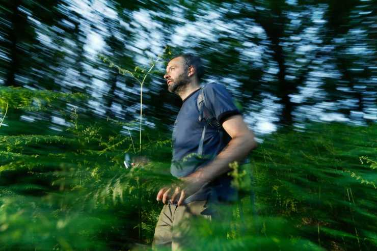 Man wearing blue shirt lost in the woods   Lost In The Woods 101: What To Do When Lost In The Woods