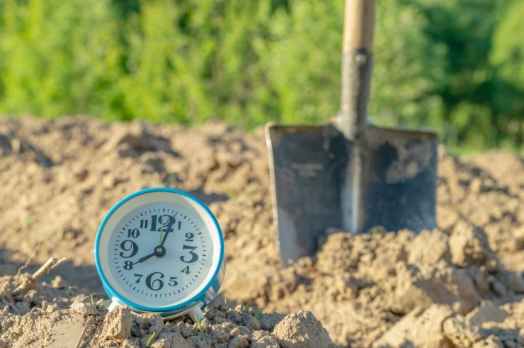 Timing is Everything | Setting Up Your Own Garden