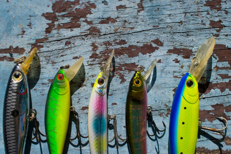 Lures and Bait | Fishing 101