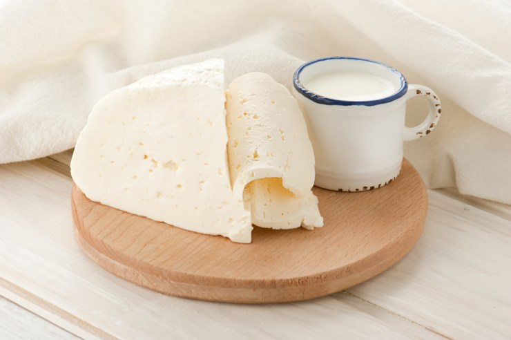 Goat Milk & Cheese | Goats Are Underrated: Reasons You Need Goats