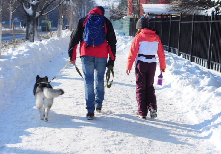 man with daughter and dog walk in winter | walking on ice | ss