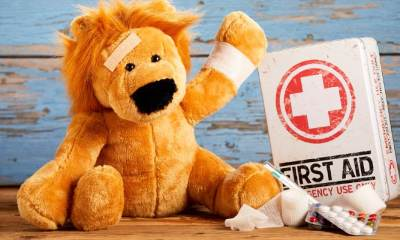 Pediatric healthcare or veterinary medicine concept with a cute little stuffed lion with a bandage head and arm alongside | Safety And Preparedness Kits For Children | Featured