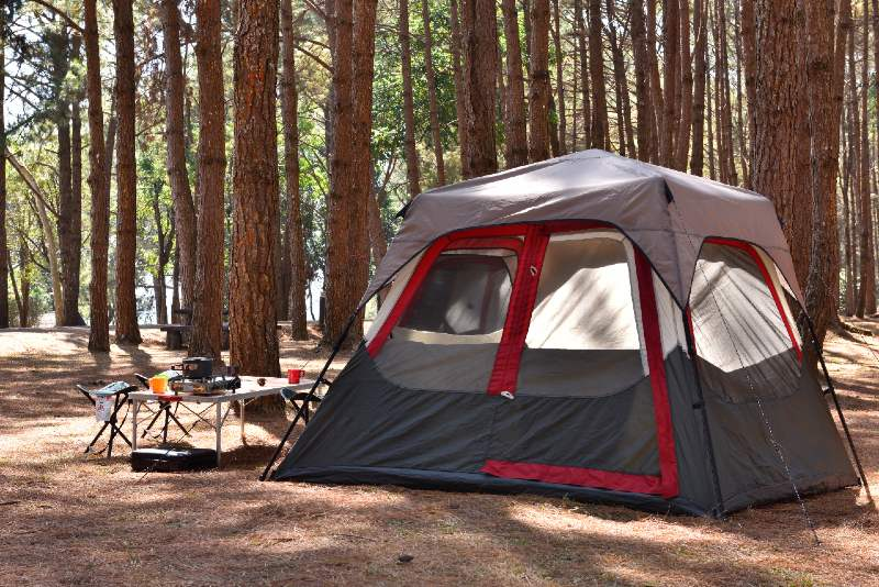 Camping tent with desk and chairs in pine forest-tent
