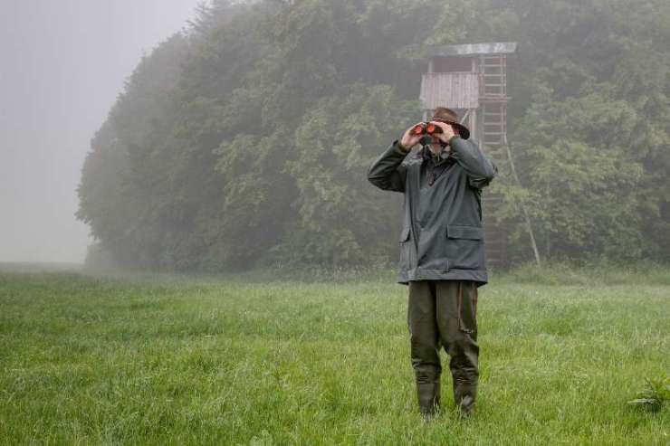 On a rainy day a hunter stands in front of the hunting pulpit-summer hunting