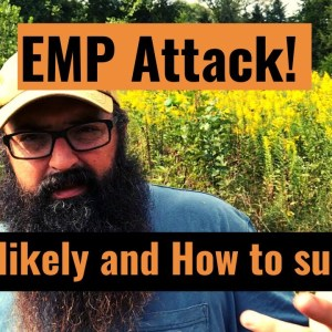 EMP Attack! How likely and how to survive.