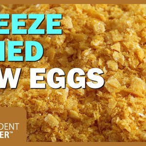 Food Storage: Freeze Dried Raw Eggs