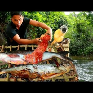 Survival in the rainforest - Man and yellow monkey find food in water meet fish - Eating delicious
