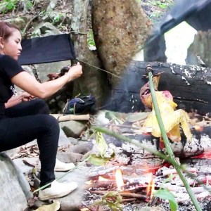 Survival Skill Trapping wild Chicken, Cooking and eating delicious in forest