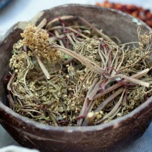 Medicinal Herbs Book: The Lost Ways Of Herbal Remedy