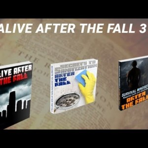 Alive After The Fall 3 Review