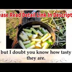 The Lost Book of Herbal Remedies Review 2021   Great Natural Herbal medicine / Scam Alart 🚫