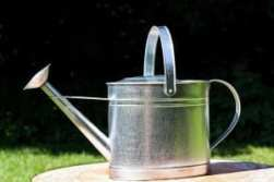 watering-can-397299_640