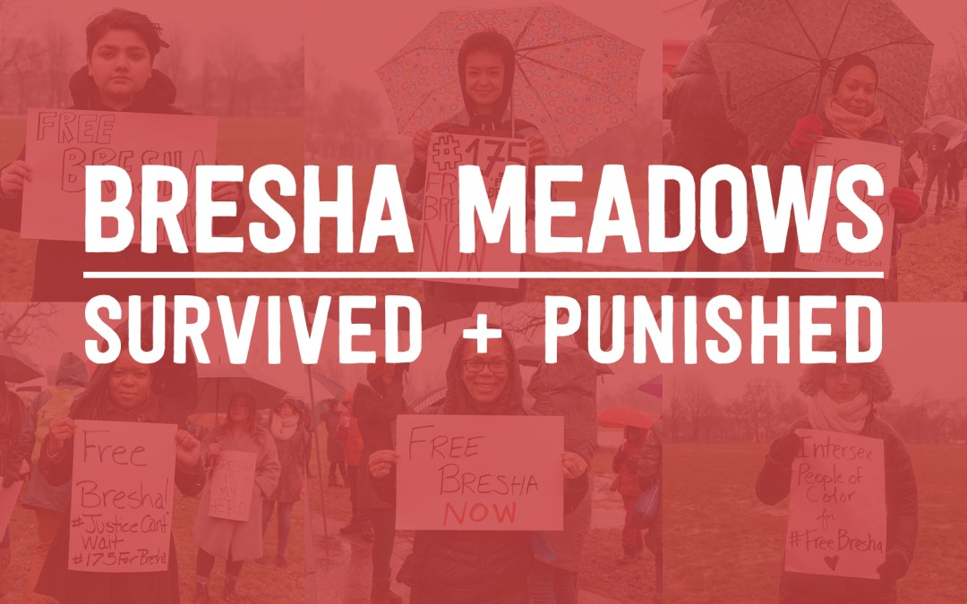 Bresha Meadows: Survived and Punished Video