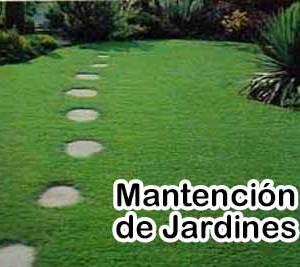 Mantención de Jardines y Áreas Verdes