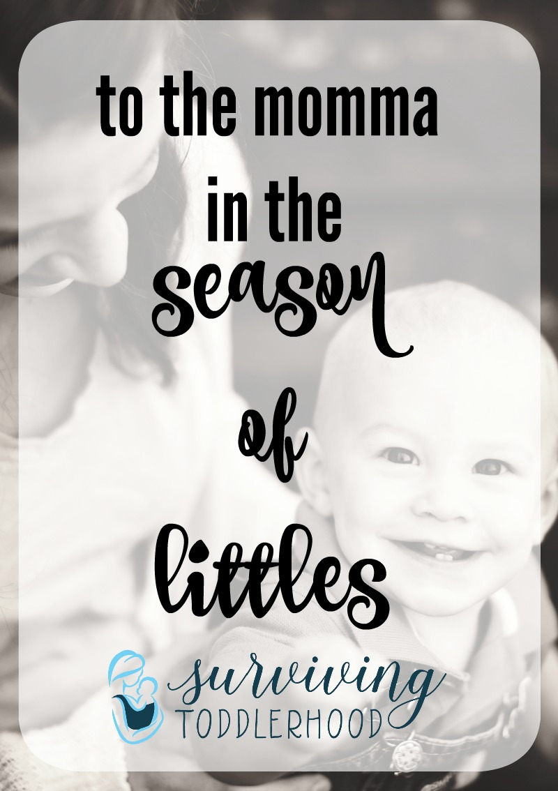 to the momma in the season of littles
