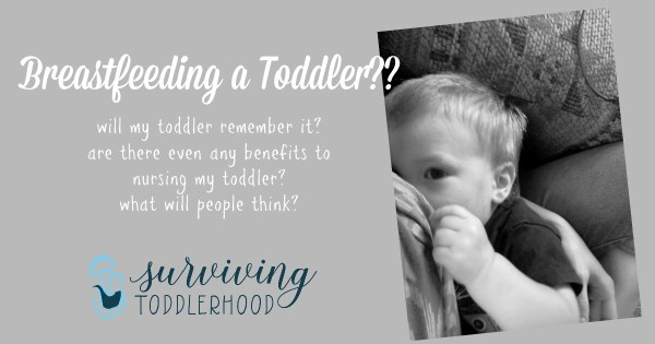 Breastfeeding a toddler?!?