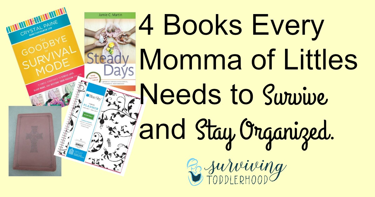 4-books-every-momma-of-littles-needs-to-survive-and-stay-organized-fb