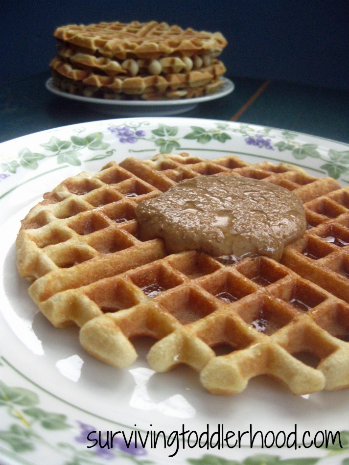 GAPS Coconut Flour Waffle Recipe