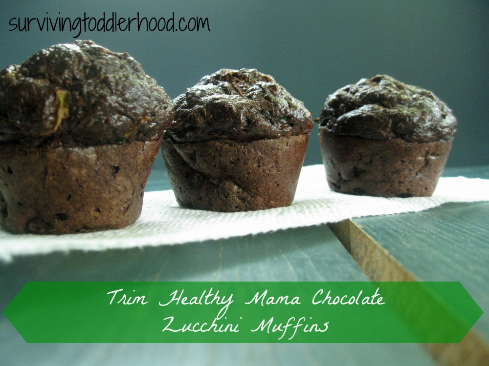 Trim Healthy Mama Chocolate Zuchinni Muffins