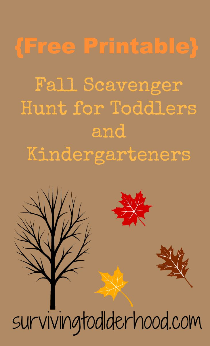 photograph regarding Fall Scavenger Hunt Printable called Tumble Scavenger Hunt for Babies and Preschoolers No cost