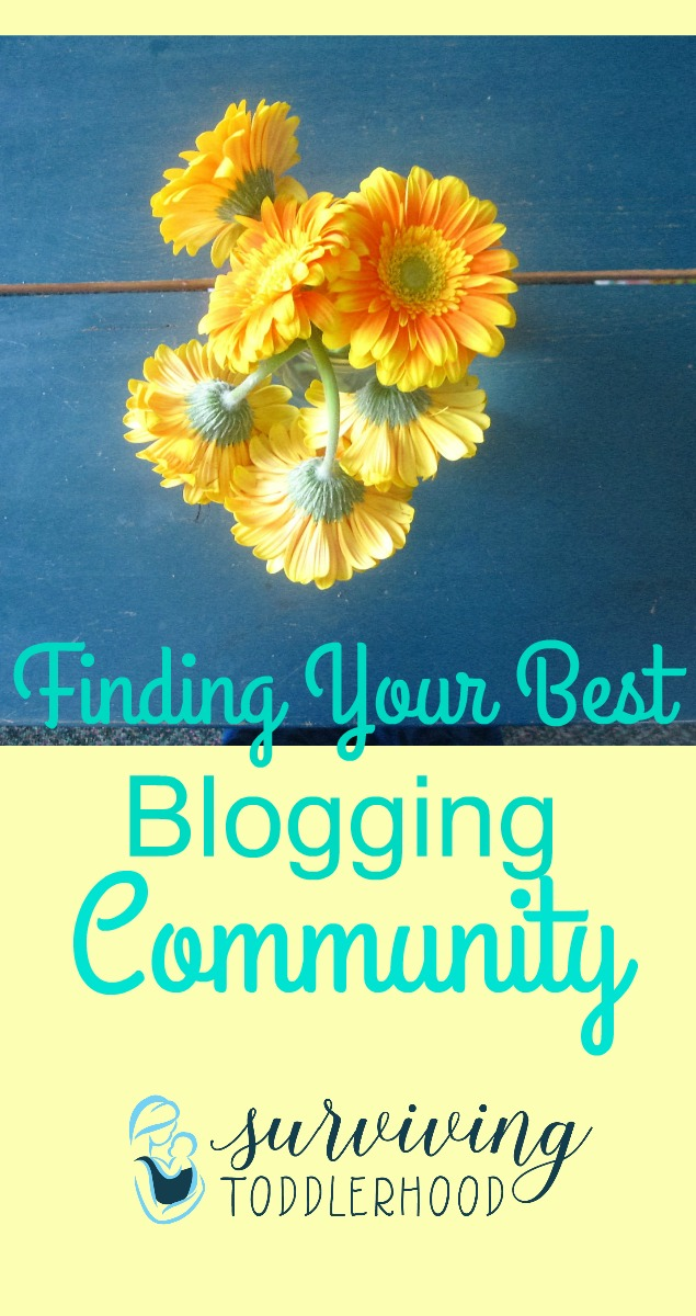 How to Find Your BEST Blogging Community 1. Define Your Audience 2. Look for other blogs in your niche and connect with them.....