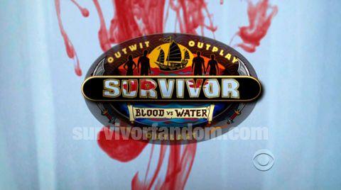 Survivor 2013