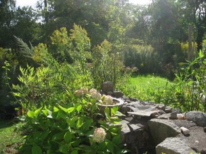 Höst i trädgården