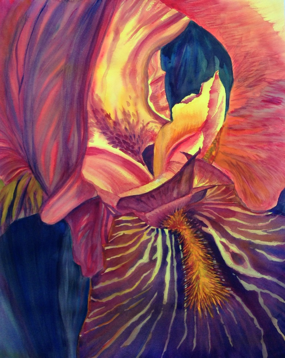 Iris Glow – Image © Susan Bartel. All Rights Reserved.