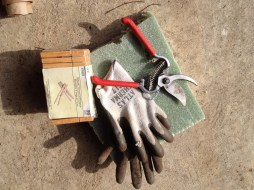 gloves clipper