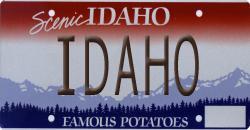 Famous potatoes (2/2)