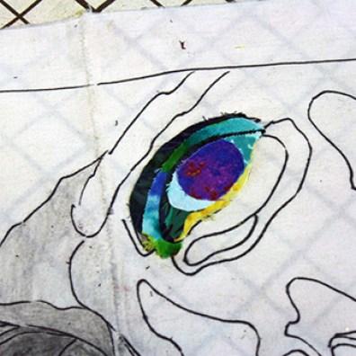 eye56