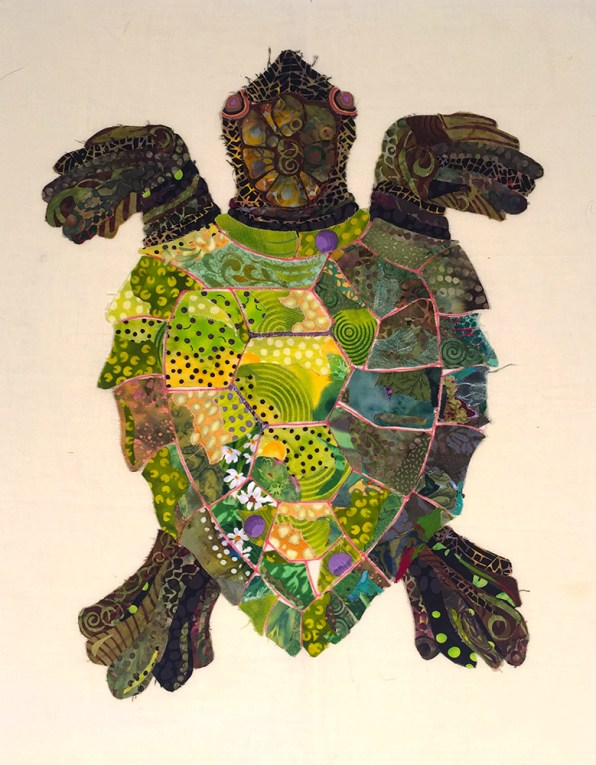 turtle372dpi