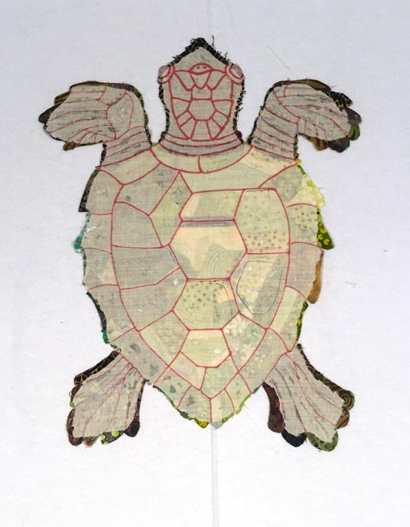 turtle472dpi