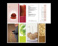 my role PRODUCTION agency CREATIVE NETWORK art director DAVERAL PRINS. available papers and specs showcased in a small size binder. 3 section dividers (coated, uncoated and specialty) and quick reference bookmark. formatting client supplied info into clean, easily accessible design.