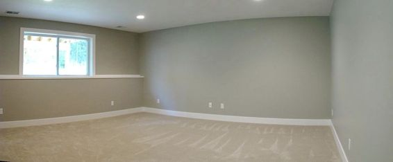 Lower level carpeted family room with daylight windows.